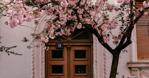 Hva forteller utgangsdøren om deg?